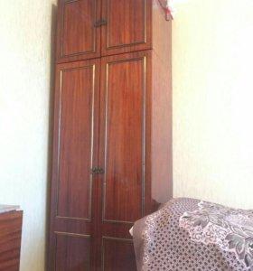 Шкаф для одежды из красного дерева