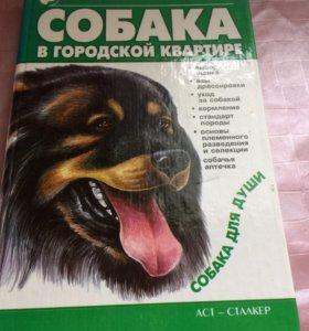 книга «Собака в городской квартире»