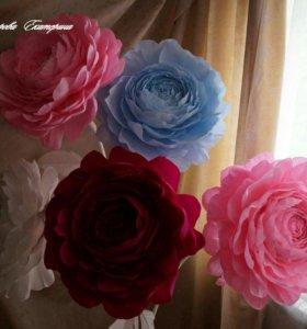Ростовые большие цветы