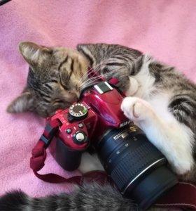 Фотоапрарат