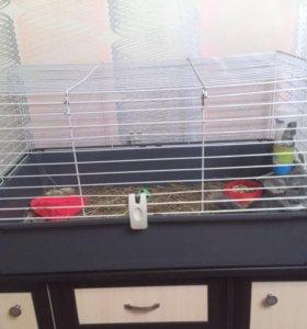 Клетка для кроликов,шиншилл