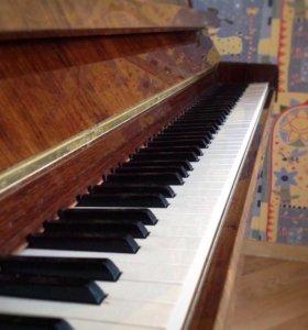 """Фортепиано """"Petrof"""" Модель 100Sonatino"""