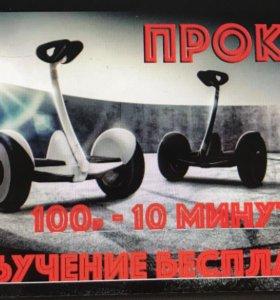 Аренда гироскутеров xiaomi ninebot в Ельце