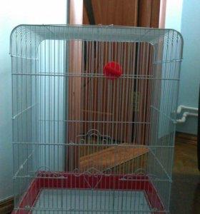 Клетка для попугая, жердочки,кормушки, купальня.