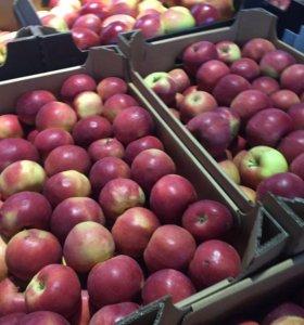 Яблоки в ассортименте , оптом и крупным оптом