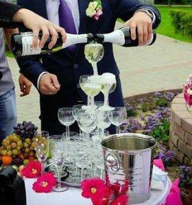 Горка из шампанского на свадьбу праздник