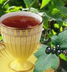 Сыроедение.Смородина.Чай.