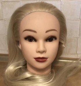 Новая учебная голова-манекен