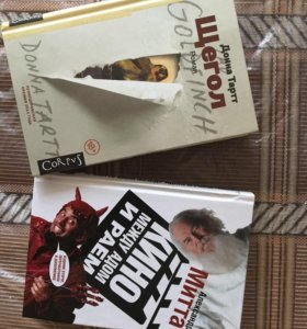 Книги-Щегол, Кино между адом и раем.