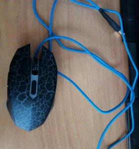 Мышь Dragon war