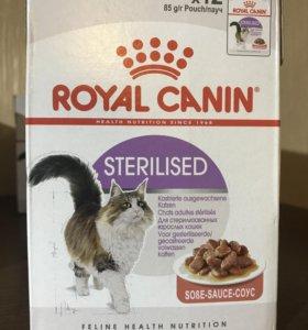 Премиум корм Royal Canin для кошек