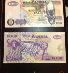 Банкнота Замбия