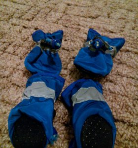 Ботиночки для собаки