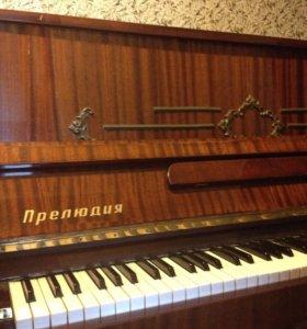 Пианино,бесплатно,самовывоз