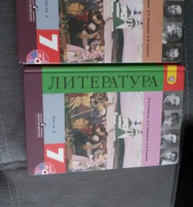 Литература,7 класс,2 части