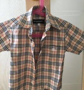 Рубашка оригинал burberry