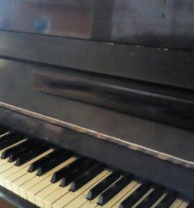 Пианино Приморье,самовывоз
