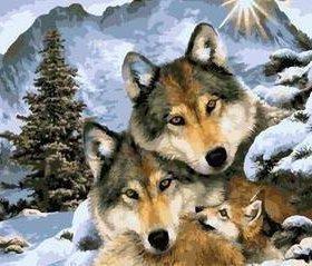 Картина по номерам - волки