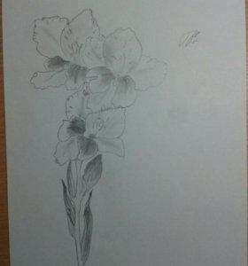 Гладиолус и лилии
