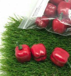 Перец сладкий красный декоративный 30мм