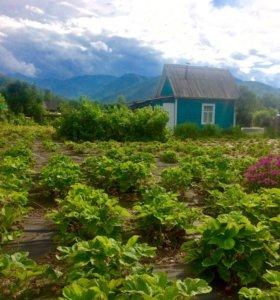 Дача в Байкальске на Бабхе -1