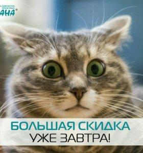 "Химчитка ""Диана"" в городе Муром"