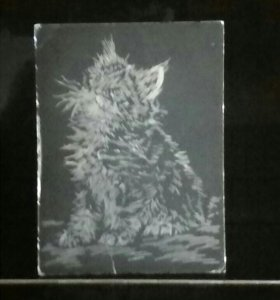 Гравюра кошки