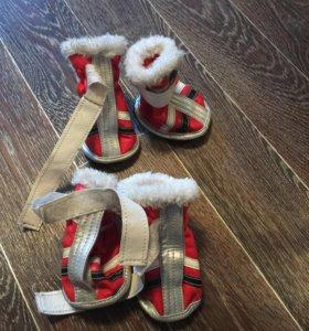 Продам зимние ботиночки на собаку
