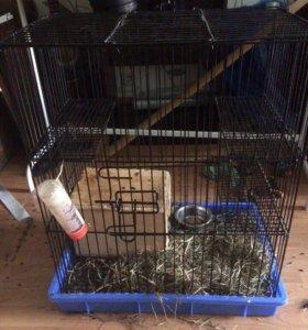 Клетка для грызунов + домик
