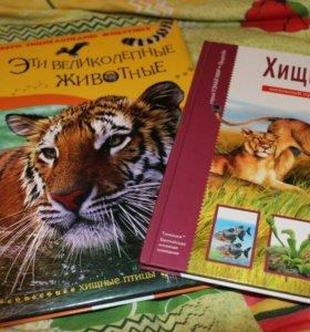 Книги про хищников для детей
