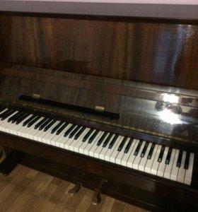 Фортепиано, Лирика