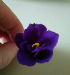 ФИАЛКА , цвет фиолетовый