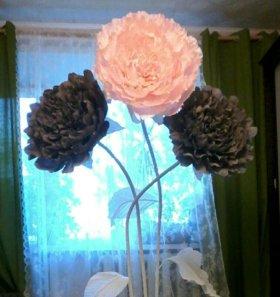 Гигантские пионы для оформления фотозоны, свадьбы