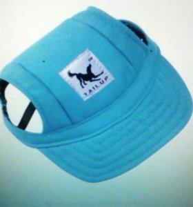 Новая шляпа для маленьких собак