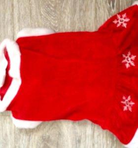 Новогоднее костюм - платье для собаки