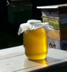 Свежий вкусный мед