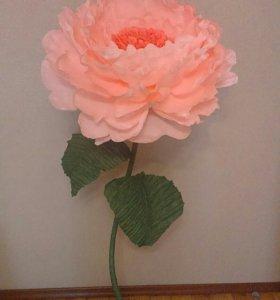 Большие бумажные  гигантские  цветы пион
