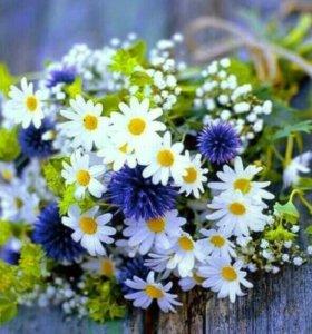 Букеты из полевых цветов