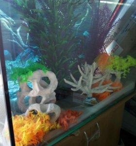 Новый аквариум 105 литров и другие.