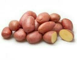 Картофель 500 р. Мешок