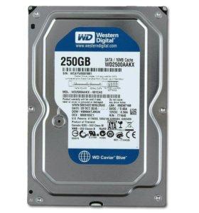HDD WD 250 Gb