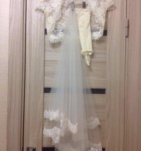 Свадебная фата + перчатки