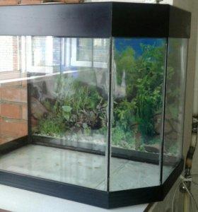 Продам аквариум 120литров б/у