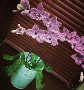 Цветы из бисера(орхидея)