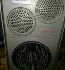 Аккустическая система 25АС-109