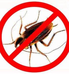 Уничтожение тараканов в Алексине