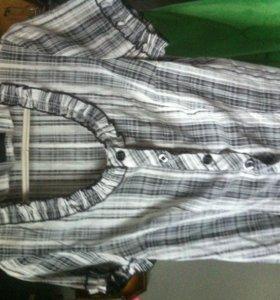 блузки , рубашки ! за каждую по 150руб