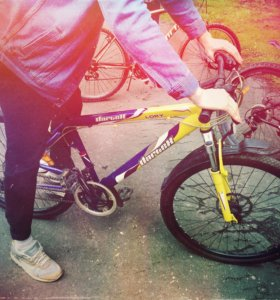 Велосипеды ( прокат)