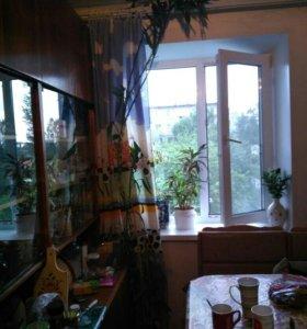 Драцена (бамбук)
