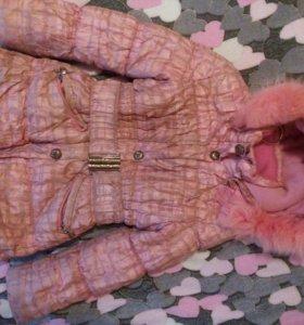 Зимняя курточка Donilo.